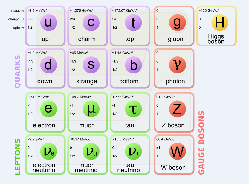 Standard Particle Model