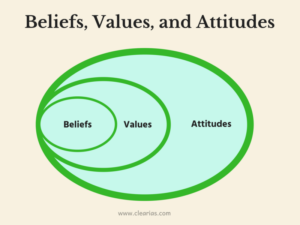 Beliefs, values, and attitudes