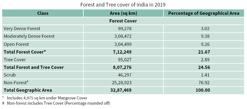 Forest and Tree Cover 2019